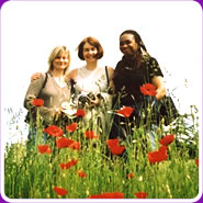 Christian Singles Welcome poppies
